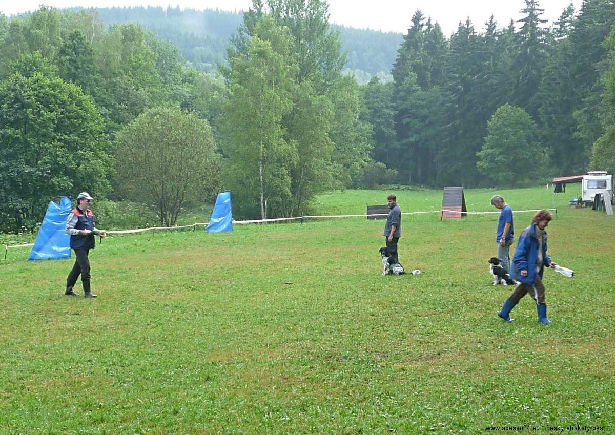 web sport kyn3