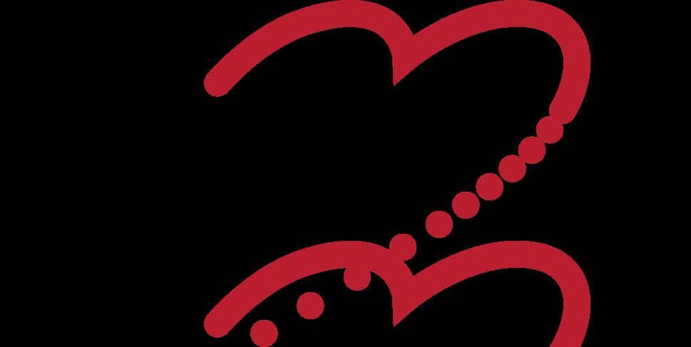 logo-spolku_podlouhle